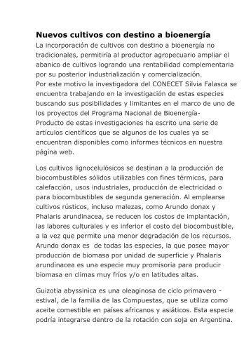 Nuevos cultivos con destino a bioenergía - desarrollo argentino
