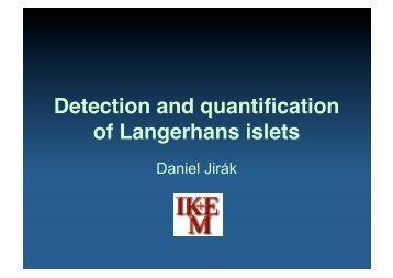 Detection and quantification of Langerhans islets - Encite