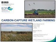 carbon-capture wetland farming - Restore America's Estuaries