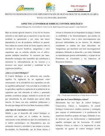 (CONTROL BIOLÓGICO).pdf - DIGECA