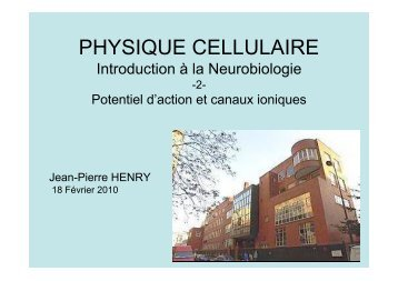 Neuroscience 2fin - copie 1