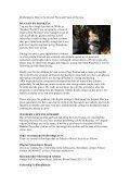 Moriel Missions South Africa PO BOX 210, Napier ... - Moriel Ministries - Page 2