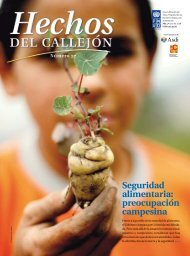 Descargue la revista número 37 - Programa de las Naciones Unidas ...