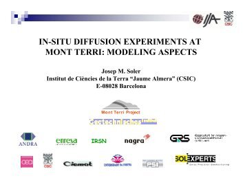 in-situ diffusion experiments at mont terri: modeling aspects