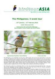 Philippines; custom tour: 22nd Jan - 11th Feb 2012 - Birdtour Asia