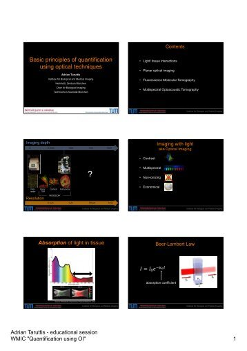 Basic principles of quantification using optical techniques