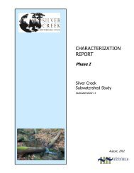 Silver Creek – Phase I – Characterization Report (August 2002)