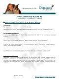 InfoAnmFrgTrickEinsteiger 21.02.09 - Dogdance - Katharina Henf - Seite 3