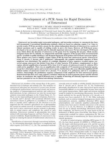 Development of a PCR Assay for Rapid Detection of Enterococci