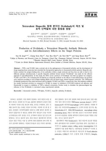 Tetravalent Bispecific 항체 분자인 Di-diabody의 제조 및 표적 단백질 ...