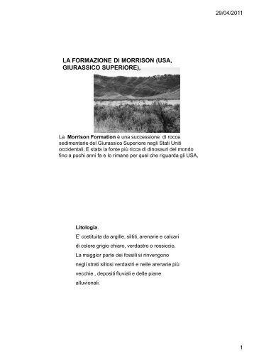 Morrison - Università dell'Insubria