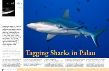 Tagging sharks in Palau | X-Ray Magazine | Issue 44 - September ...