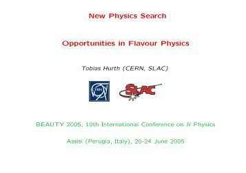 New Physics Search in Flavour Physics - Tobias Hurth - CERN