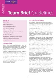 Team Brief Guidelines - Businessballs