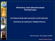 Workshop sobre Bioeletricidade Siamig/Cogen