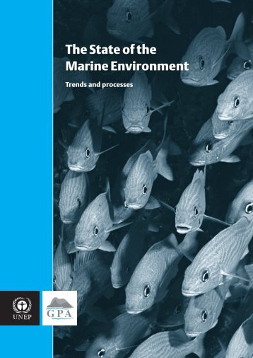 The State of the Marine Environment - Caribbean Environment ...