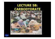 lect5b-carbohydrate1