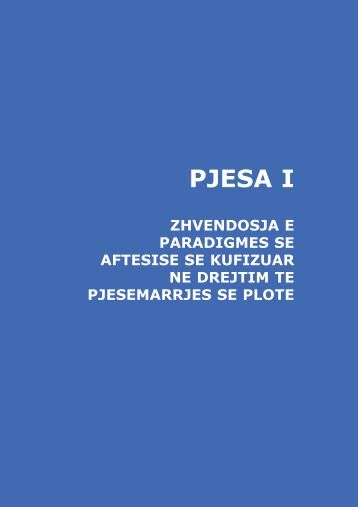 PJESA I - Disability Monitor Initiative