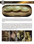 Basketry and matting in mesoamerica - Wide-format-printers.org - Page 4