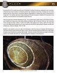 Basketry and matting in mesoamerica - Wide-format-printers.org - Page 7