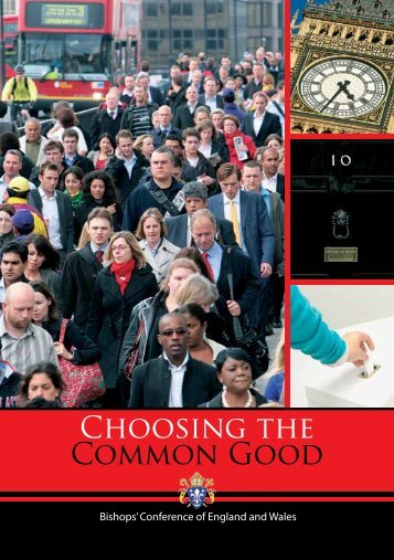 Choosing the Common Good - Catholic Bishops' Conference of ...