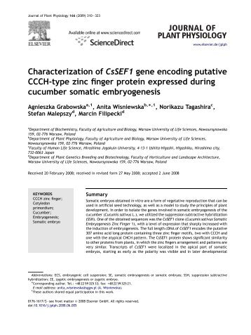 Characterization of CsSEF1 gene encoding ... - Marcin Filipecki
