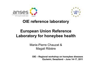 Reference Laboratory for bee diseases - OIE Africa