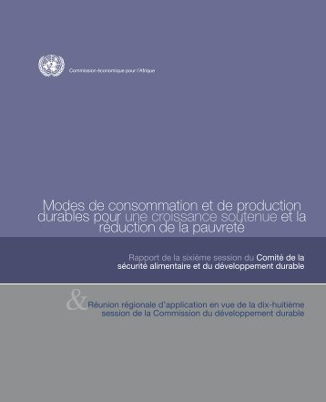 CFSSD Report_FR.indd - Economic Commission for Africa - United ...
