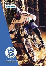 Giant ATB folder - BCE Bikes