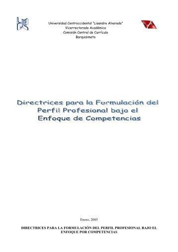 Directrices para la formulación del perfil profesional bajo el enfoque ...