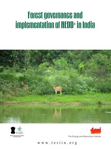Forest governance and implementation of REDD+ in India