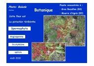 Télécharger la fiche complète - Jean-Louis Negre