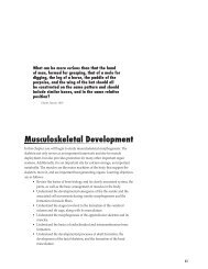 Musculoskeletal Development - Biology Courses Server