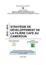 stratégie de développement de la filière café au cameroun