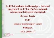 Az EFI-k szakmai tevékenysége