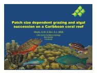 Patch size dependent grazing and algal succession ... - utila ecology