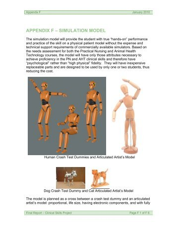 appendix f – simulation model - the Clinical Skills Project Website