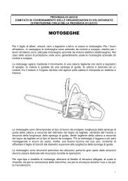 Caratteristiche delle motoseghe - Provincia di Lecco