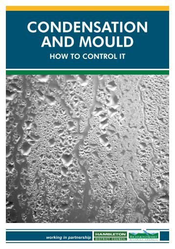 CONDENSATION AND MOULD - Hambleton District Council