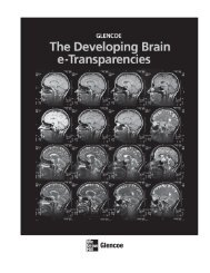The Developing Brain e-Transparencies - McGraw-Hill Higher ...