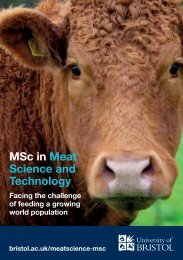 MSc in Meat Science and Technology