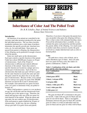 Inheritance of Color And The Polled Trait - American Simmental ...