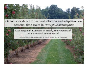 Genomic evidence for natural selection and adaptation on seasonal ...