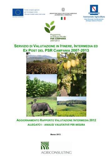 Allegati al rapporto 2012 - Regione Campania