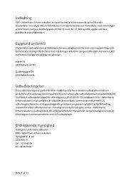 Udbudsbetingelser revision A - KEA