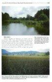 Zur Verbreitung der Bauchigen Windelschnecke Vertigo moulinsiana - Seite 3
