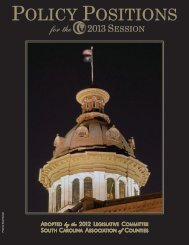 Policy Positions for the 2013 Session - South Carolina Association ...