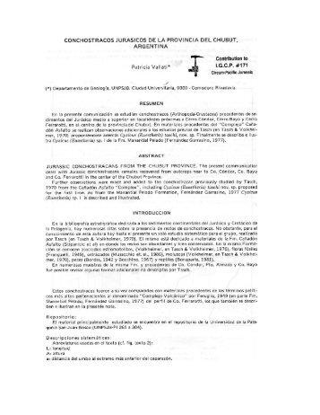 Conchostracos Jurásicos de la provincia del Chubut, Argentina