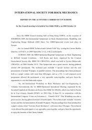 VP Europe Activity Report 2010 - ISRM