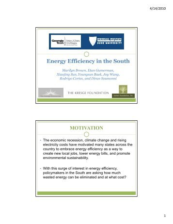 Energy Efficiency in the South
